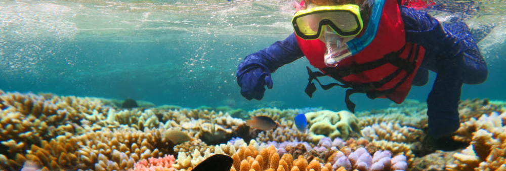 Queensland, Australia, scuba diving at the Great Barrier reef.
